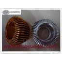 aluminium LED light CY-TY09